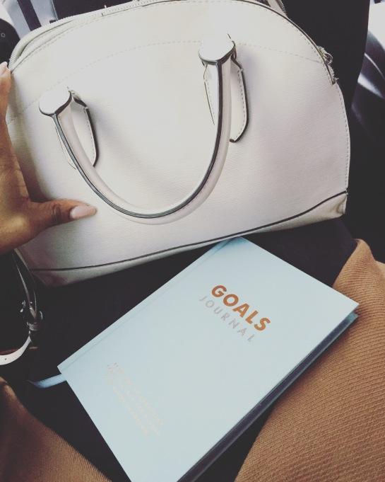 zara handbag goals journal